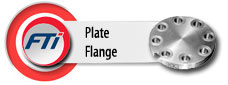 Carbon Steel/ Stainless Steel Plate Flange